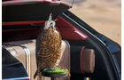 05/2017 Bentley Bentayga Falconry