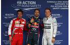 Alonso, Vettel & Rosberg - GP Brasilien - 23. November 2013