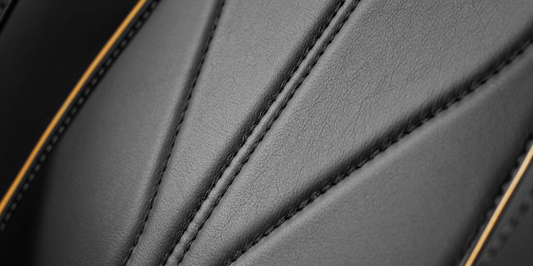 Aston Martin Virage, Sitz