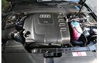 Audi A4 Kaufberatung, Audi A4 2.0 TDI, Motor