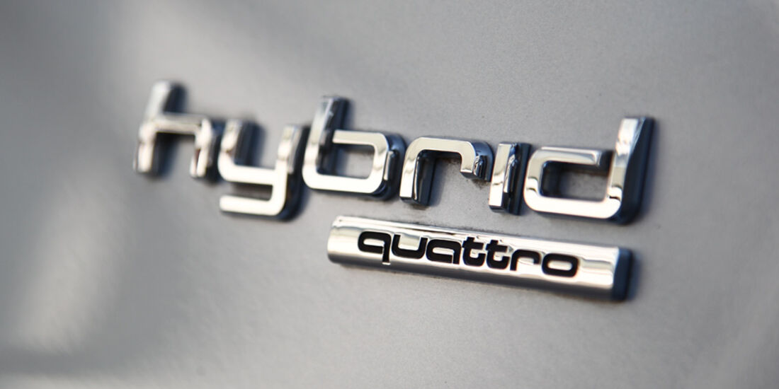 Audi Q5 Hybrid Quattro, Emblem