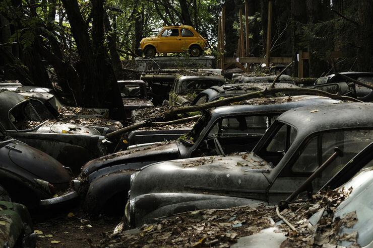 Auto-Friedhof
