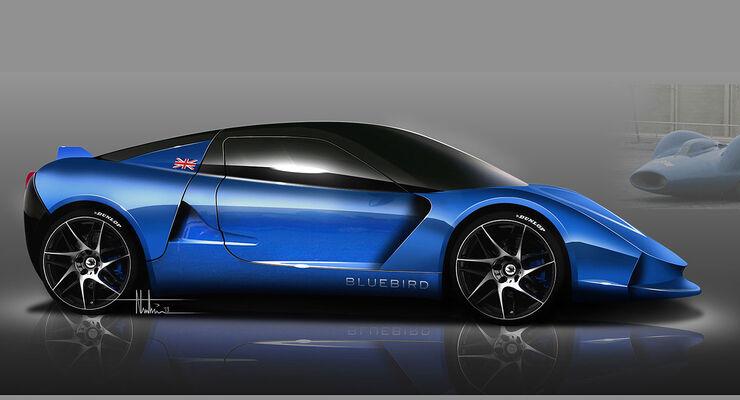 Bluebird Cars
