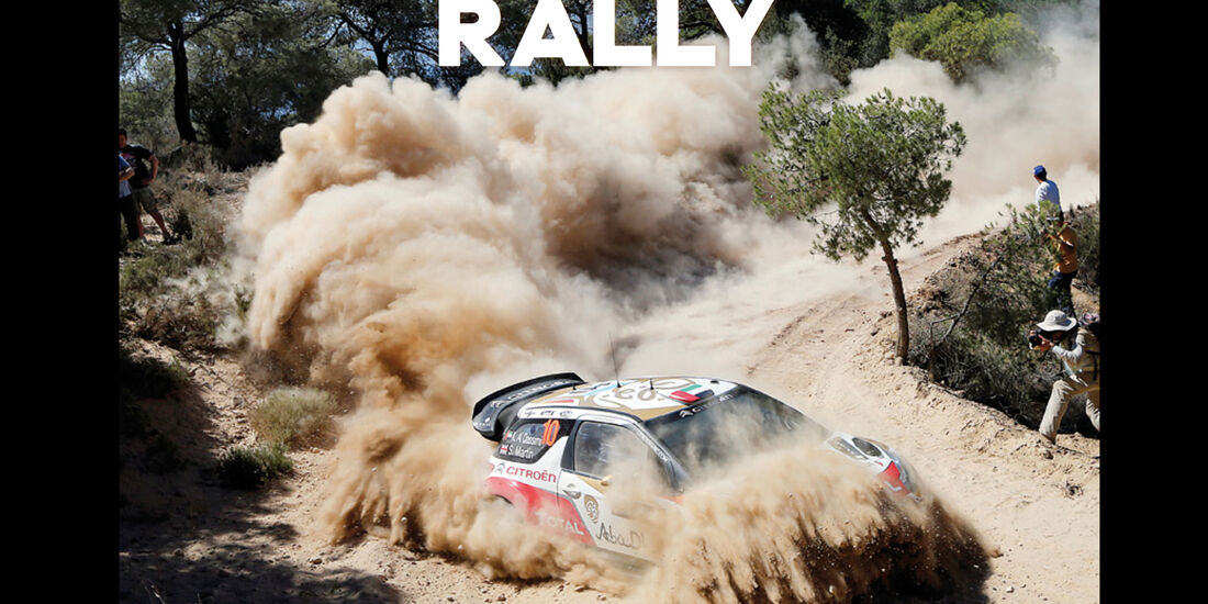 Buch-Cover - Rally - McKlein