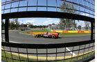 Daniel Ricciardo - Toro Rosso - GP Australien - Melbourne - 17. März 2012