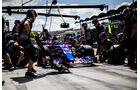 Daniil Kvyat - Toro Rosso - Formel 1