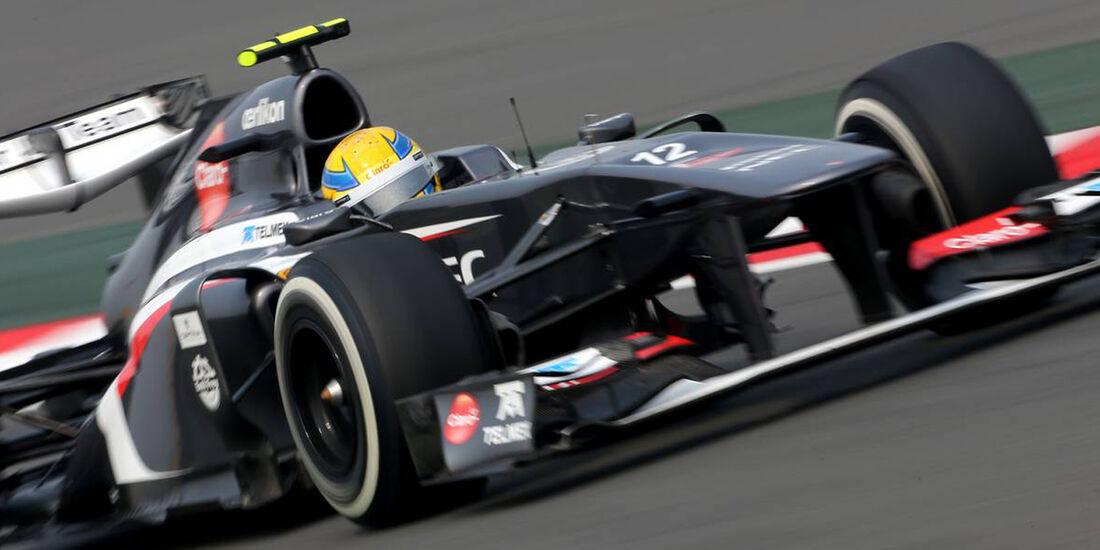 Esteban Gutierez - Sauber  - Formel 1 - GP Indien - 25. Oktober 2013