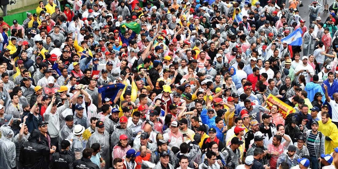 Fans - GP Brasilien 2016 - Interlagos - Rennen