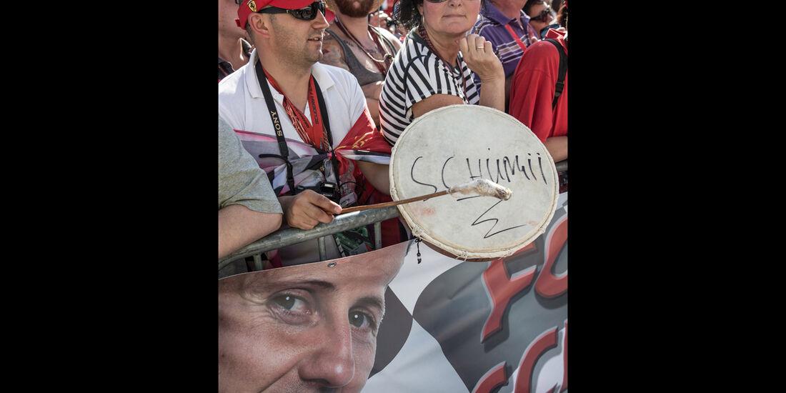 Fans - GP Ungarn 2014 - Danis Bilderkiste