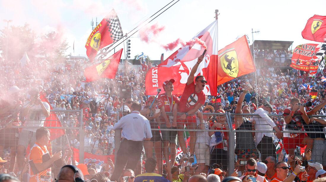 Fans - GP Ungarn 2018 - Budapest - Rennen