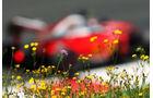 Ferrari - Formel 1 - GP Österreich - 2. Juli 2016