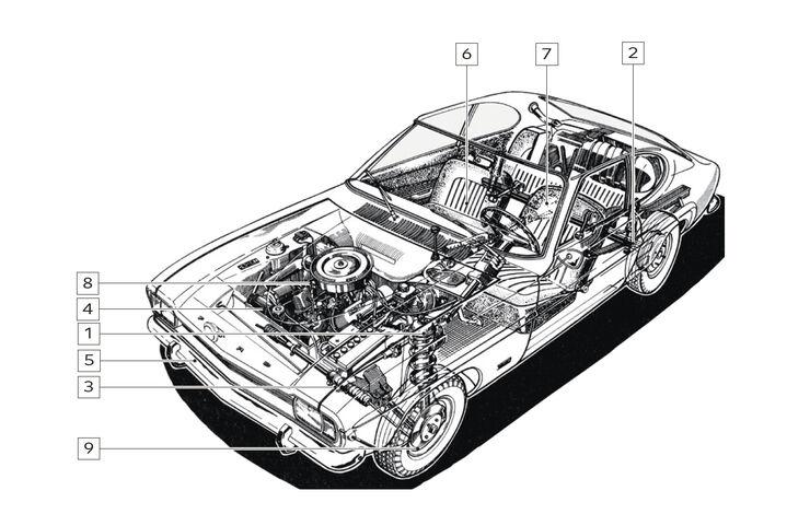Ford Capri Perana, Igelbild, Schwachstellen