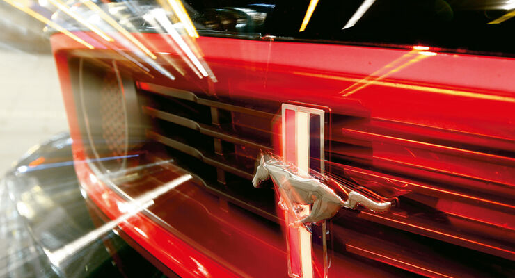 Ford Mustang Boss 302 Laguna Seca, Kühlergrill