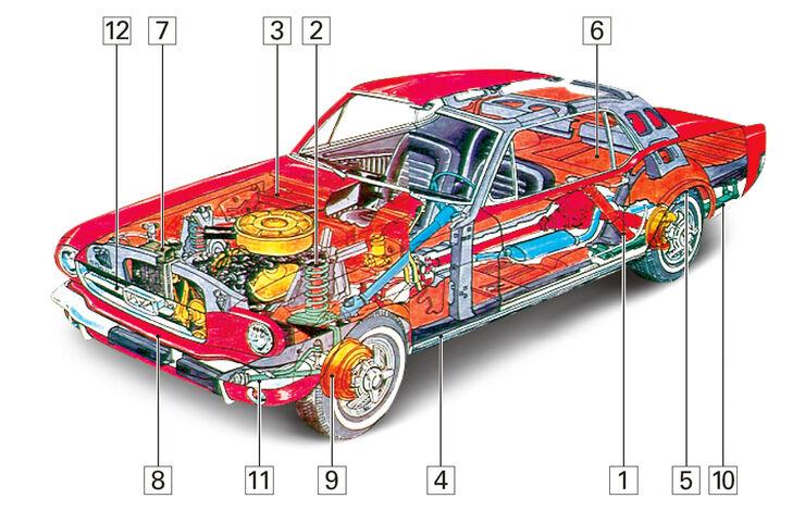 Ford Mustang I, Schwachstellen, Igelbild