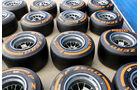 Formel 1 - Test - Jerez - 27. Januar 2014