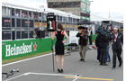 Grid Girls - GP Kanada 2016 - Montreal