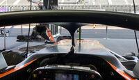 Halo - McLaren - 2017