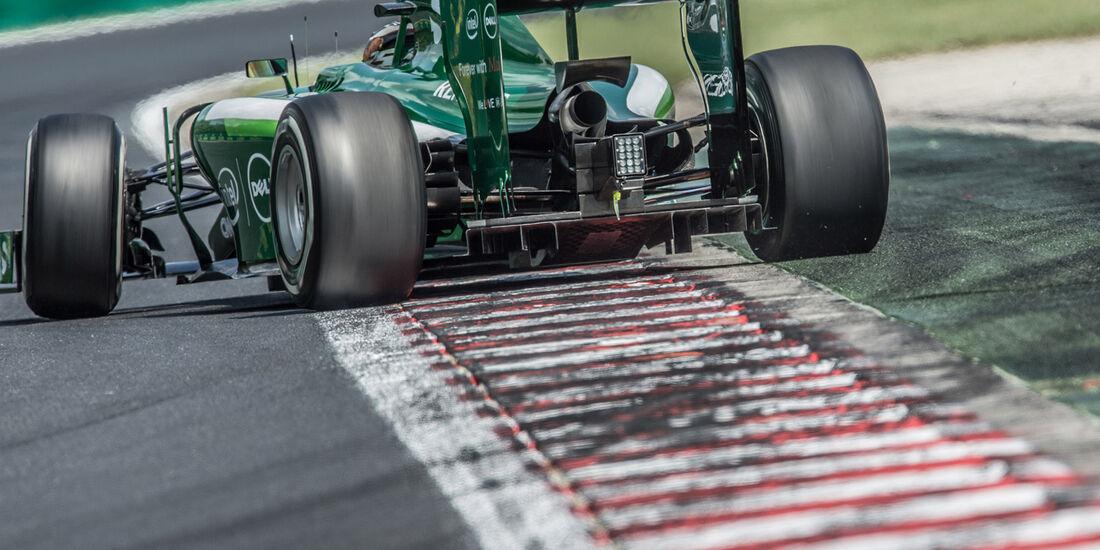 Kamui Kobayashi - GP Ungarn 2014 - Danis Bilderkiste