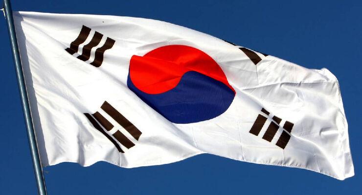 Korea Flagge - Formel 1 - GP Korea - 13. Oktober 2011