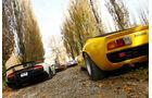Lamborghini V12, alle Fahrzeuge, Rückansicht