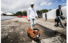 Lewis Hamilton - Mercedes - Formel 1 - GP Spanien - Barcelona - 11. Mai 2017