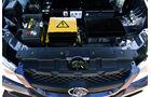 Luis 4U Sondermodell, Elektroauto, SUV, Motor