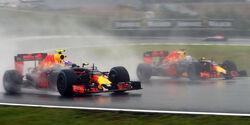 Max Verstappen - Daniel Ricciardo - Red Bull - GP Brasilien 2016