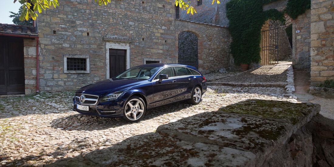 Mercedes CLS 250 CDI Shooting Brake, Seitenansicht