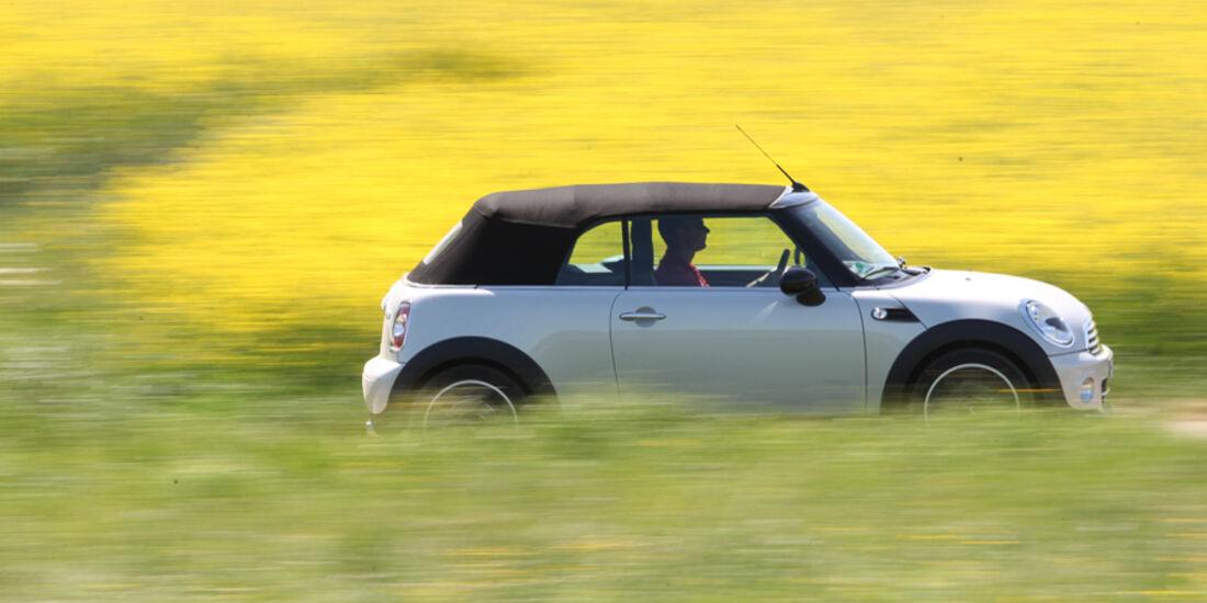 Mini Cooper Cabrio, Seitenansicht, Verdeck zu, Wiese