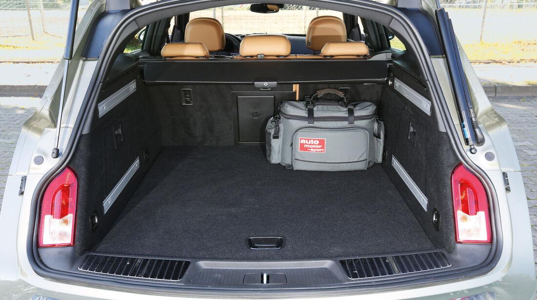 Opel Insignia Country Tourer, Kofferraum