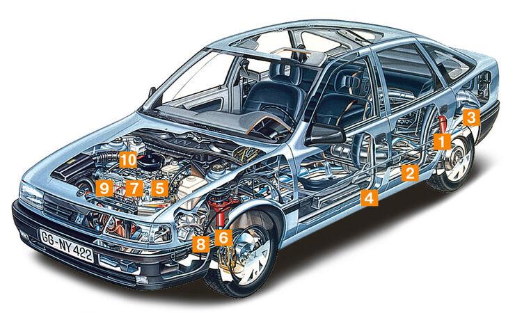 Opel Vectra 2.0i, Schwachstellen, Igelbild