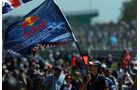 Red Bull Fans  - Formel 1 - GP England - 30. Juni 2013
