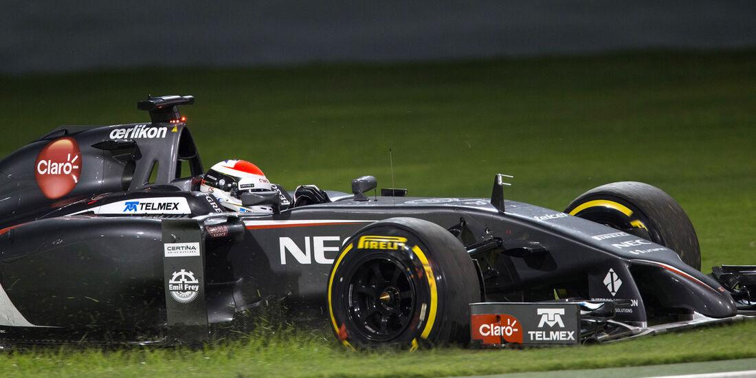 Sauber - GP Bahrain 2014