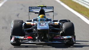 Sauber GP Korea 2013