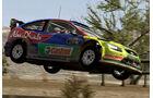 Screenshot FIA WRC Game 2010