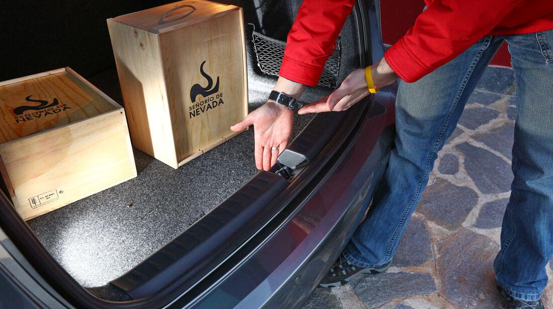 Seat Ibiza ST 1.6 TDI, Kofferraum