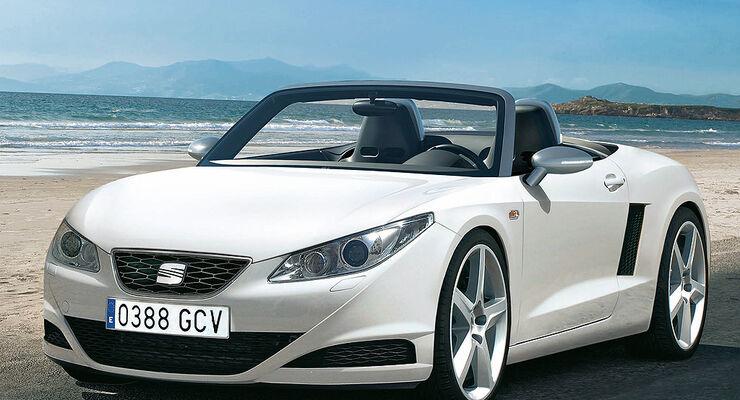 Seat Roadster: VW Roadster aus Spanien - auto motor und sport