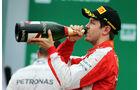Sebastian Vettel - Formel 1 - GP Brasilien- 15. November 2015