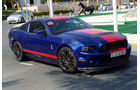 Shelby Mustang - GP Abu Dhabi - Carspotting 2015