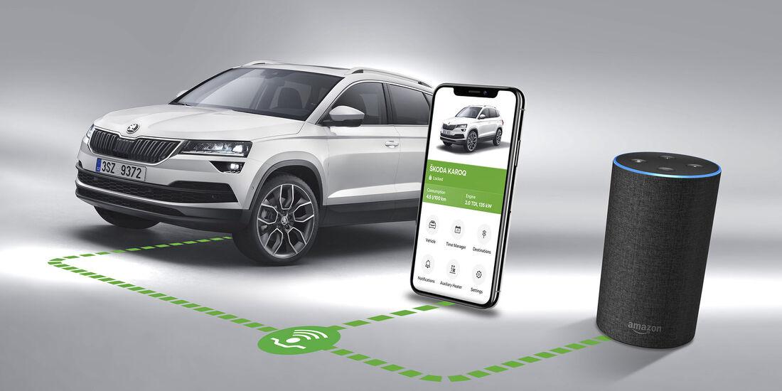 Skoda Connect: Freisprech-Telefonie und Online-Medien