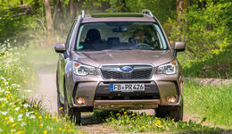 subaru forester auto motor und sport. Black Bedroom Furniture Sets. Home Design Ideas