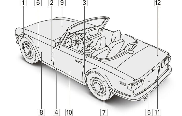 Triumph TR 6, Igelbild, Schwachstellen
