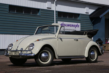 Schwedens größtes Käfer-Museum machtzu