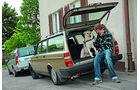 Volvo 240 Kombi mit Mann und Hund